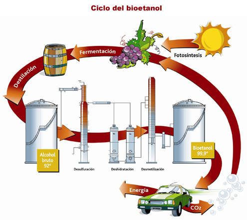 Bioetanol. | Tecnoblogsanmartin